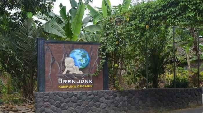 Brenjonk, Kampung Organik di Mojokerto
