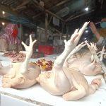 Harga Ayam Merangkak Naik, Ikfina Sidak Pasar di Mojosari