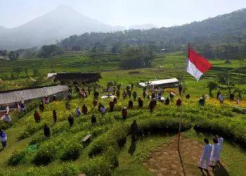 Petani Penanggunagn, Petani, Upacara di Sawah